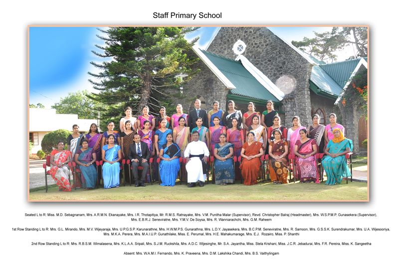 Primary School Staff